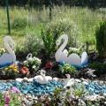 Цветник на территории детского сада