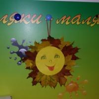 Мастер-класс по аппликации из природного материала «Осеннее солнышко»
