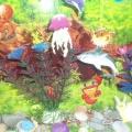 Макеты «Сухой аквариум», «Деревенское подворье»