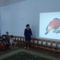 Конспект виртуальной экскурсии по экологическому развитию с использованием ИКТ «Зимующие птицы»