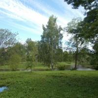 Экологическая сказка «Уроки Сентябринки». Глава 10