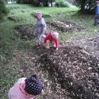 Фотоотчет «Мы учимся трудиться»