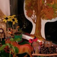 «Огород на окне». Фотоотчет о конкурсе в детском саду