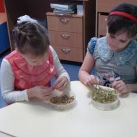 Информационно-практический проект «Лекарственные растения Заволжья»