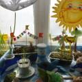Огород на окне «Морской»
