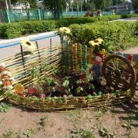 Фотоотчет «Маленькие огородники»