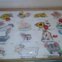 Фотоотчёт о занятии по лепке во второй младшей группе на тему «Колечки и бусы»