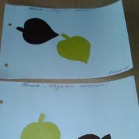 Аппликация во второй младшей группе «Падают листья»