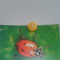 Фотоотчёт о рисовании во второй младшей группе «Божья коровка»