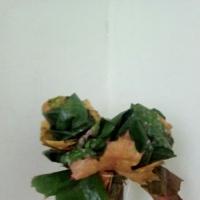Творческое занятие «Осенний букет»