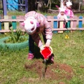Фотоотчет об экологической акции «Посади дерево»