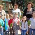 Благотворительная акция в ДОУ «Дерево детям»