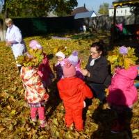 Фотоотчет о работе над проектом «Осень— дивная пора»