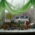 Наш чудо-огород. Фотоотчет