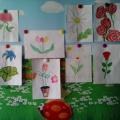 Международный день цветка. Фотоотчет.