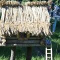 «Сказочная избушка». Поделка из дерева для оформление участка детского сада