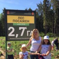 Фотоотчет «Всероссийская памятная акция «Лес Победы», посвящённая Великой Победе в Великой Отечественной войне»