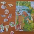Дидактическая игра по экологии для детей 4–7 лет «Лес, полянка, пруд, луг»
