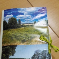 Лэпбук для старшего дошкольного и младшего школьного возраста «Экология»