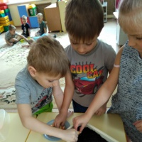 Образовательная среда «Огород на окошке»