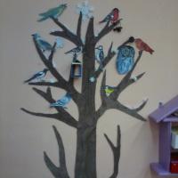 Уголок природы «Дерево наблюдений»