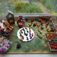 Игровой макет «Птичий двор»