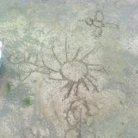 Фотоотчет «Развитие творческого воображения на прогулке»