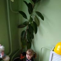 Конспект летнего занятия развлечения с детьми раннего возраста. Тема: «Польём цветы»