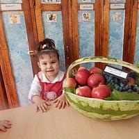 Конспект образовательной деятельности по развитию речи и рисованию в средней группе «Овощи и фрукты»