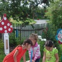 Организация работы в ДОУ по экологическому воспитанию детей дошкольного возраста