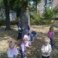 «Осень кисточку достала, Всё вокруг разрисовала» Младшая группа. Фотоотчёт
