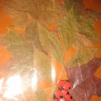 Выставка детских работ «Осенний калейдоскоп»
