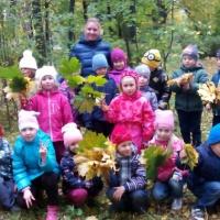 «Осенний лес». Конспект организации туристического похода с детьми подготовительной группы