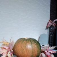 Мастер-класс поделки из природного материала «Девочка Осень»