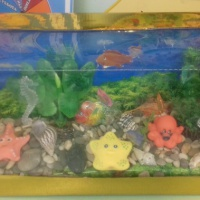 «Сухой аквариум» в уголке природы в средней группе