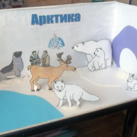 Мастер-класс по изготовлению макета «Арктика и Антарктика»