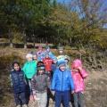 Фотоотчет «Экскурсия в лес» и «Экологическая тропа в нашем детском саду»