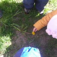 Краткосрочный проект «Солнышко на ножке» во второй младшей группе