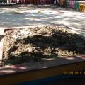 Мастер класс: Поделка из песка «Динозавр в гостях у малышей»