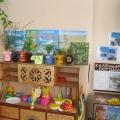 «Экологическое воспитание в нашей группе ДОУ»