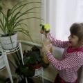 Фотоотчёт «Воспитание трудолюбия у дошкольников»