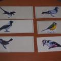 Дидактическая игра «Угадай птичку»