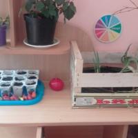 Конспект НОД по познавательному развитию для детей второй младшей группы «Овощи и фрукты— полезные продукты»