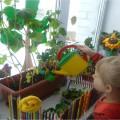 Идеи для оформления окна «Огород на окне»