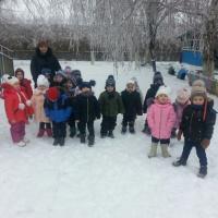Конспект прогулки «Наблюдение за березой в зимний период» для возрастной группы 3–4 лет