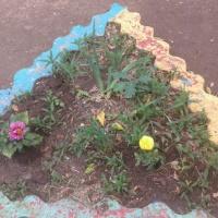 Фотоотчёт о трудовой деятельности в природе весной «Сажаем цветы в клумбы»