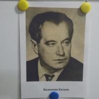 Конспект занятия по чтению художественной литературы в старшей группе «Чтение сказки В. Катаева «Цветик-семицветик»