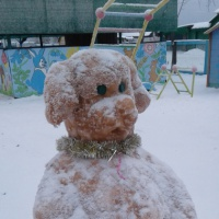 «Здравствуй, зимушка-Зима!»