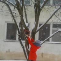Конспект НОД для детей первой младшей группы «Покормите птиц зимой»