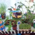 Фотоотчёт «Огород на подоконнике»